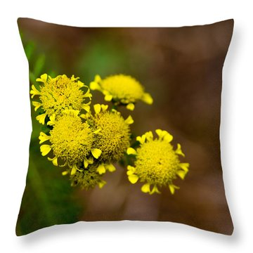 Throw Pillow featuring the photograph Tiny Petals by Erin Kohlenberg