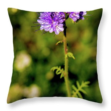 Throw Pillow featuring the photograph Tiny Puprle Flowers by Onyonet  Photo Studios