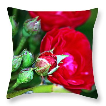Tiny Red Rosebuds Throw Pillow by KayeCee Spain