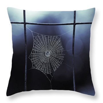 Tiny Spider Web In Blue Throw Pillow