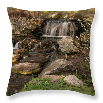Throw Pillow featuring the photograph Tiny Stream by Angie Tirado