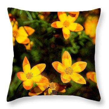 Tiny Suns Throw Pillow