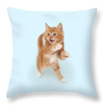 Tiny Tiger Throw Pillow