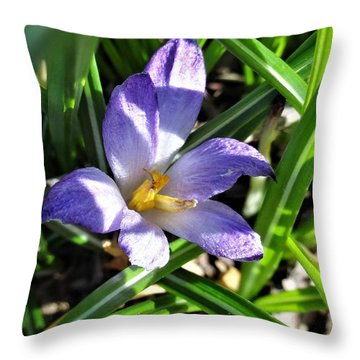 Tiny Violet Throw Pillow