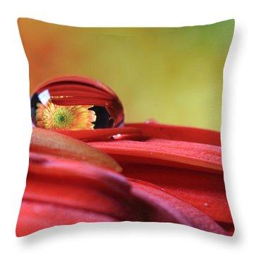 Tiny Water Drop Reflections Throw Pillow