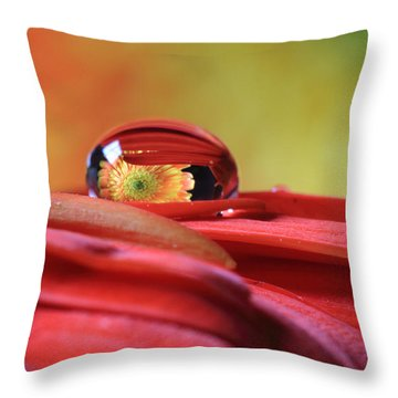 Tiny Water Drop Reflections Throw Pillow