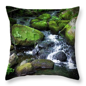 Throw Pillow featuring the photograph Tiny Waterfall - Ellsworth Maine by Kirkodd Photography Of New England
