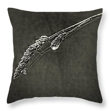 Tiny Web On Bent Grass Throw Pillow