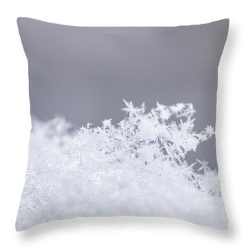 Throw Pillow featuring the photograph Tiny Worlds I by Ana V Ramirez