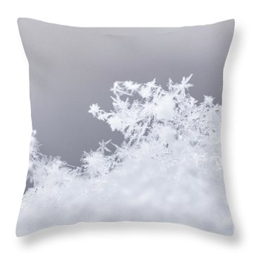 Throw Pillow featuring the photograph Tiny Worlds II by Ana V Ramirez