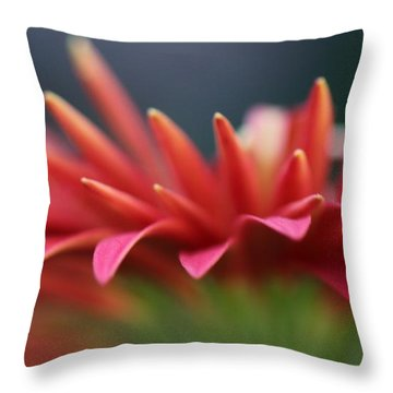 Tip Of The Flower Petals Throw Pillow