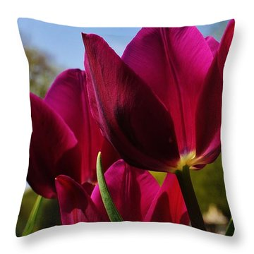 Tip Toe Through The Tulips Throw Pillow