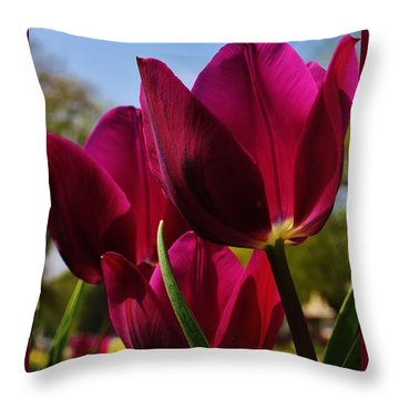 Tip Toe Through The Tulips Throw Pillow