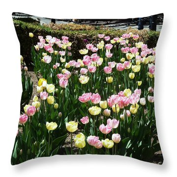 Tiptoe Through The Tulips Throw Pillow by Helen Haw