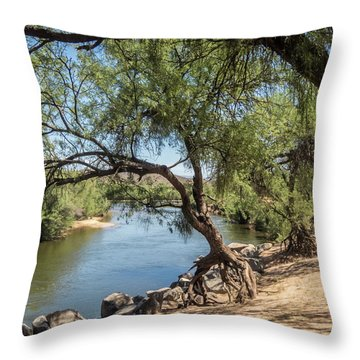 Tiptoeing Throw Pillow