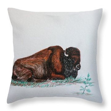 Tired Bison Throw Pillow by Ellen Canfield