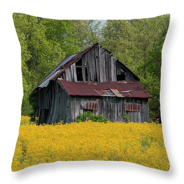 Throw Pillow featuring the photograph Tired Indiana Barn - D010095 by Daniel Dempster