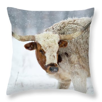 Tired Of Snow Throw Pillow