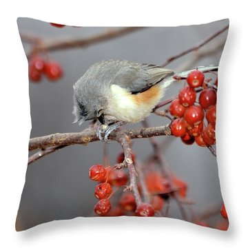 Titmouse Breakfast Throw Pillow by Betty LaRue