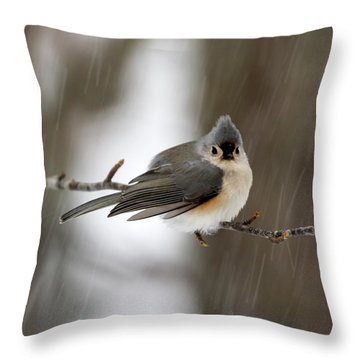 Titmouse During Snow Storm Throw Pillow