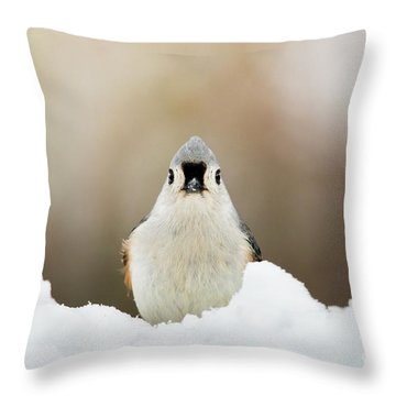 Tufted Titmouse In Snow Throw Pillow