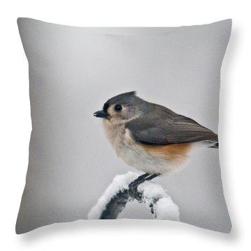 Titmouse Ready To Fly Throw Pillow by Douglas Barnett