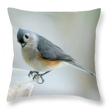 Titmouse With Walnuts Throw Pillow