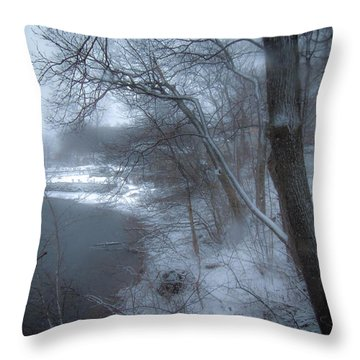 Titus Mill Ice Pond Throw Pillow by Glenn Feron