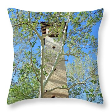 Tlaquepaque Tower Throw Pillow