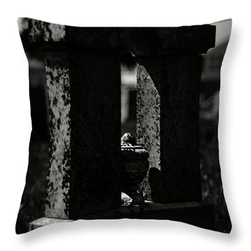 To A Shadow Throw Pillow by Rebecca Sherman