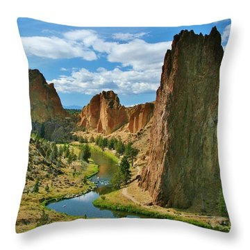 To Dream Throw Pillow by Sheila Ping