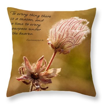 To Everything A Season Throw Pillow