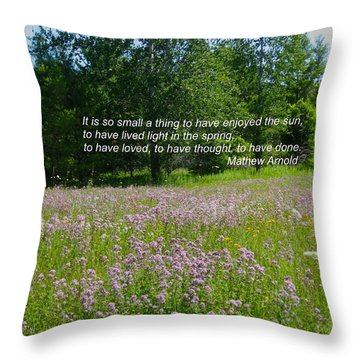 To Live Light In The Spring Throw Pillow by Deborah Dendler