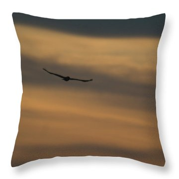 To Soar - Free Throw Pillow by Douglas Barnett