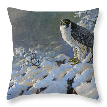 To Survive The Winter Throw Pillow
