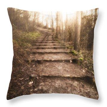 To The Light Throw Pillow