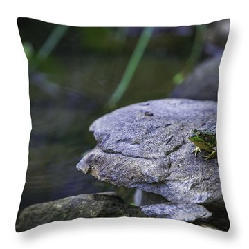 Toading It Up Throw Pillow by Jason Moynihan