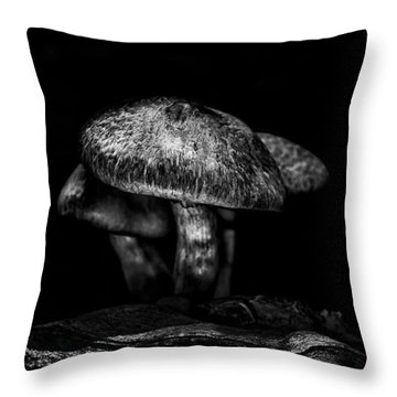 Toadstools On A Toronto Trail 1 Throw Pillow by Brian Carson