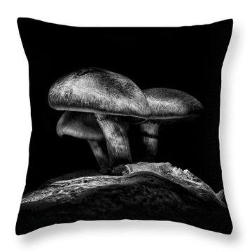 Toadstools On A Toronto Trail No 3 Throw Pillow by Brian Carson