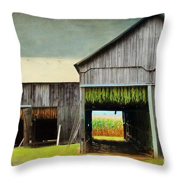 Tobacco Drying Throw Pillow