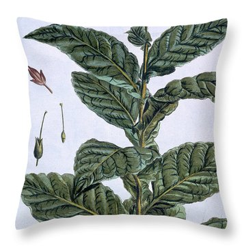Tobacco Plant Throw Pillow