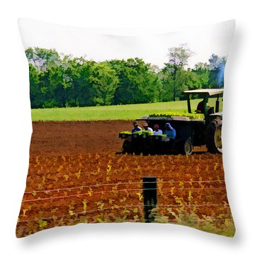 Tobacco Planting Throw Pillow