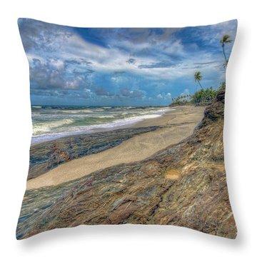 Toco Coastline Throw Pillow by Nadia Sanowar