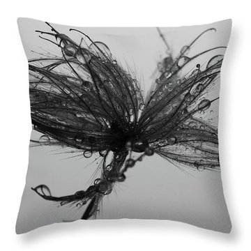 Todays I Lost  Throw Pillow