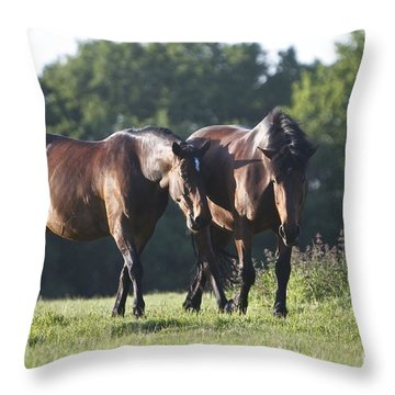 Throw Pillow featuring the photograph Together by Gary Bridger