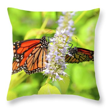Together We Can Fly So High Throw Pillow