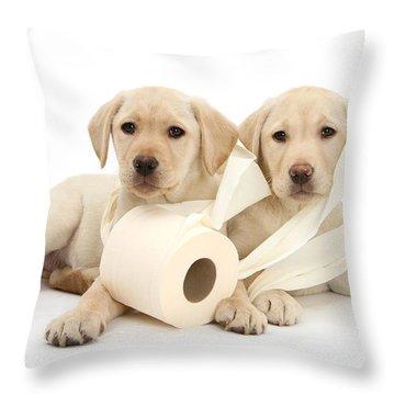 Toilet Humour Throw Pillow