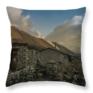 Throw Pillow featuring the photograph Toilet by Mike Reid