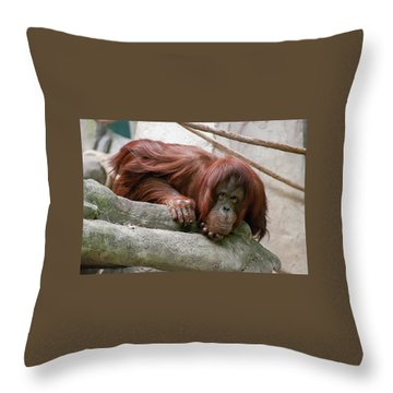Tolerating Patience Throw Pillow