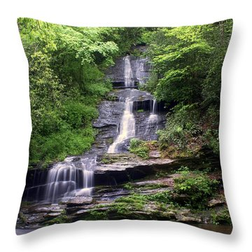 Tom Branch Falls Throw Pillow by Marty Koch